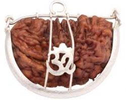 1 one face rudraksh with silver cap 1 mukhi rudraksh with silver cap