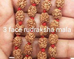 3 face rudraksha mala 3 mukhi rudraksha mala 54 beads
