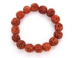 5 face Rudraksha bracelet 5 mukhi rudraksha bracelet