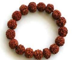 6 face rudraksh bracelet 6 mukhi rudraksh bracelet 16 beads