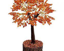 Carnelian stone tree natural carnelian stone tree 8inches