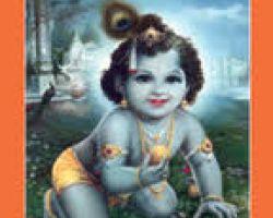 Shri bhagwat puran (