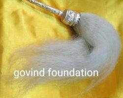 Pure silver chamar chandi ka chanvar 12 inches handle