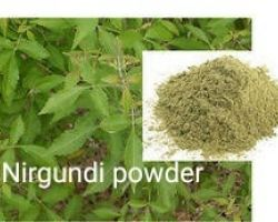 Nirgundi powder nirgudi powder 100gm