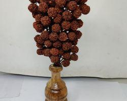 Rudraksha pot rudraksh vase 12 inches