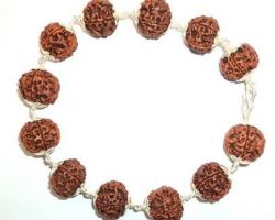 5 face rudraksh bracelet with silver cap